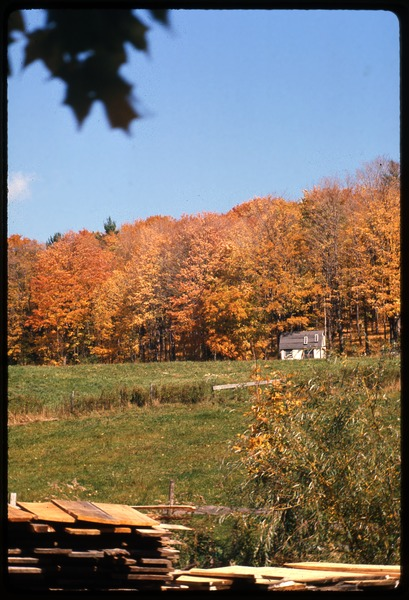 View of a small house across a field, Montague Farm Commune, October 1976