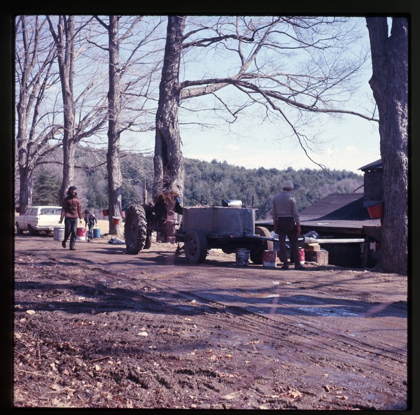 Tractor and farmers along the road while sugaring, Montague Farm Commune, March 1975