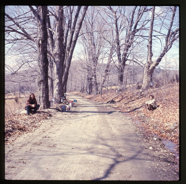 Tony Mathews seated roadside while sugaring, Montague Farm Commune, March 1975