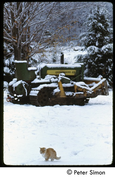 Ginger cat and John Deere tractor in the snow, Tree Frog Farm commune, ca. 1972
