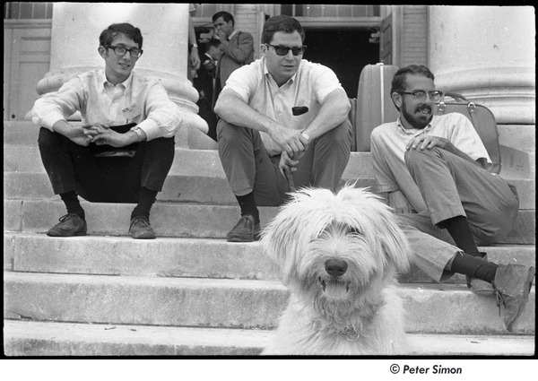 National Student Association Congress: three men and a sheep dog on the steps of the Reckord Armory, August 1967