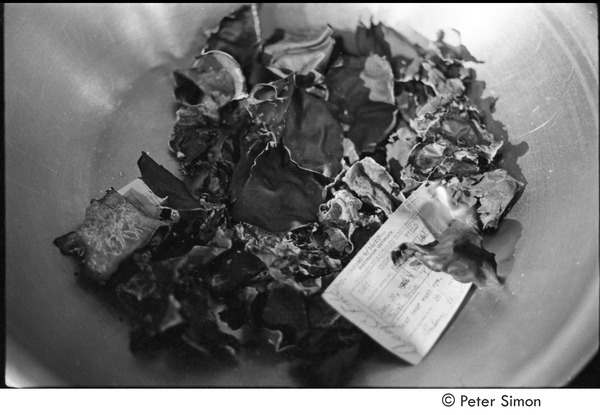 Resistance rally: burned draft cards in a bowl, October 16, 1967