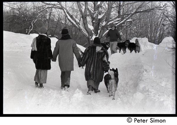 Commune members and dogs walking in heavy snow, Tree Frog Farm commune, 1970