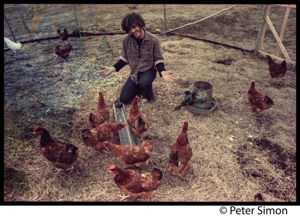 Tim Rossner with hens at Tree Frog Farm commune, ca. May 1, 1971