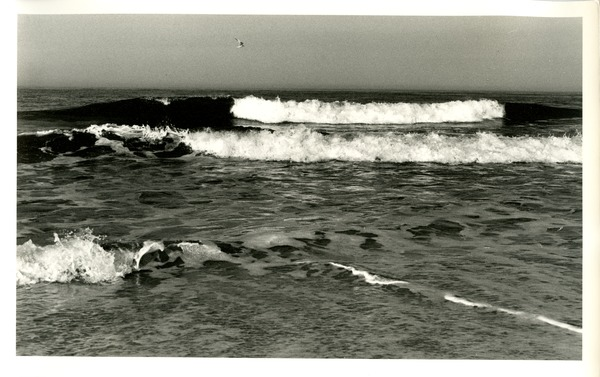 Breakers with gull, 1973