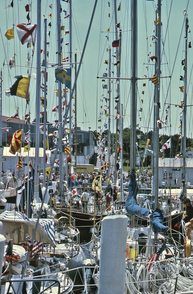 A  thicket of yachts, June 1975