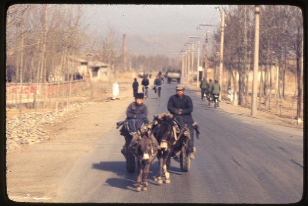General Petrochemical Works -- donkey and burro pulling cart with man and boy, March 22, 1977