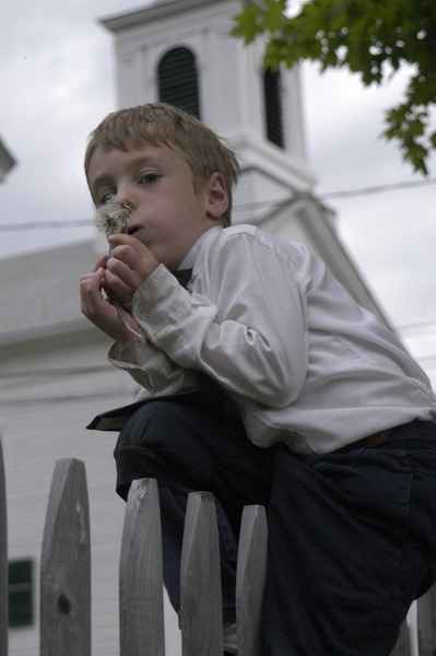 Church supper at the First Congregational Church, Whately: boy blowing on the             seed head of a dandelion in front of the church, May 15, 2003