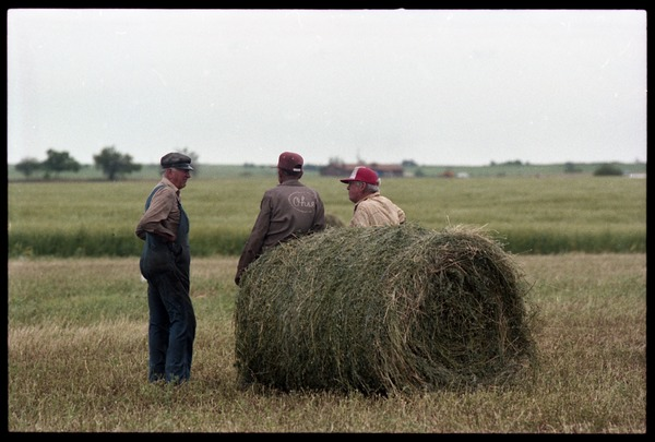 Talk of the morning: three Kansas farmers took some time off from loading             alfalfa bales to talk about crops and weather: Three farmers gathered around a round bale of alfalfa: , April 15, 1984
