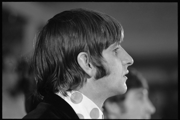 Ringo Starr seated at a table during a Beatles press conference: close-up in             profile, August 15, 1966