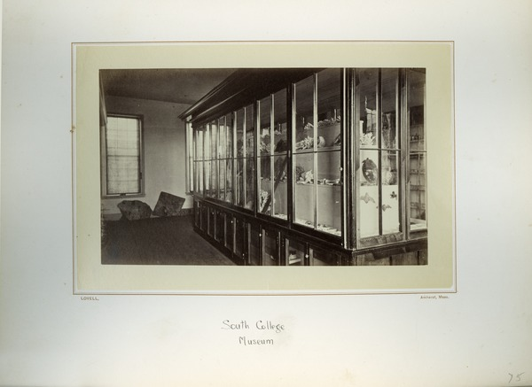 South College Museum, Massachusetts Agricultural College, ca. 1876