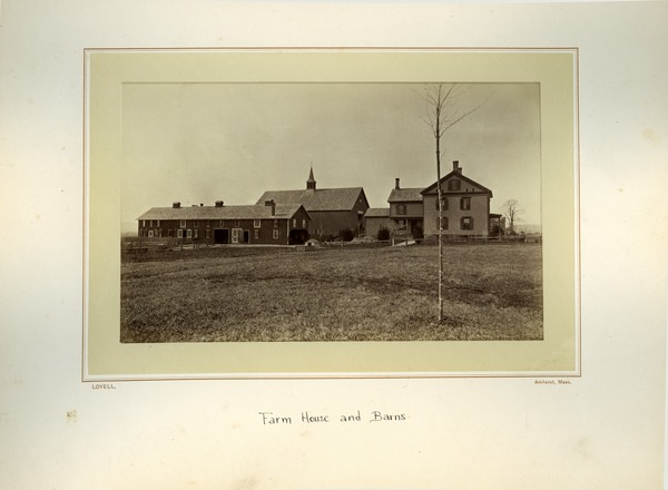 Farm house and barns, Massachusetts Agricultural College, ca. 1876