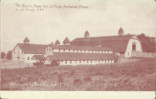 The  barn, Mass. Agl. College, Amherst, Mass., destroyed by fire Nov. 16, 1905, ca. 1905